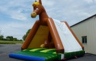 Cheval big bounce