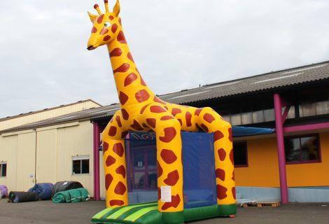 Mini girafe salon_1